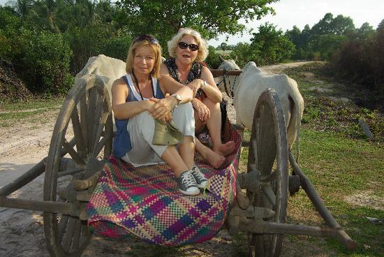 Hidden Cambodia Adventure Tours: visite d'un village au pas des boeufs