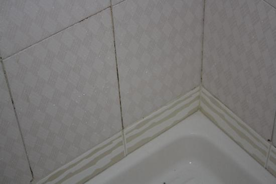 Hotel Domus Mea : dirty