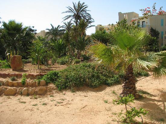 Aldiana Djerba Atlantide: zicht vanop ons terras