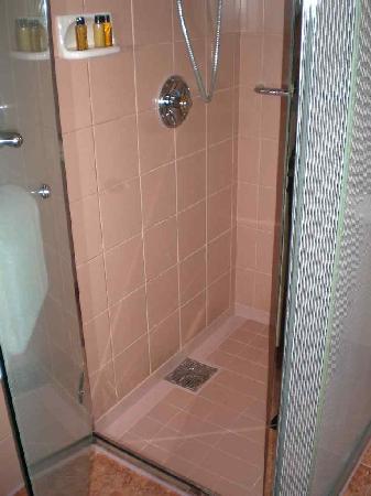 Meguro, Japonya: Clean nice shower!
