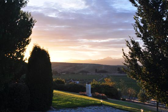 Omaka Heights B&B Countrystay : View from the terrace