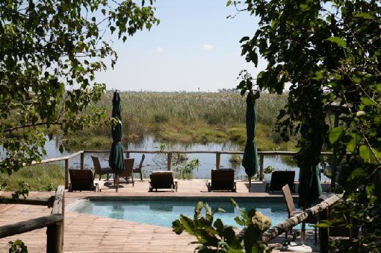 Linyanti Reserve, Botsuana: DumaTau's plunge pool