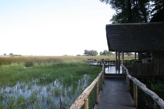 show user reviews duba expedition camp okavango delta north west district
