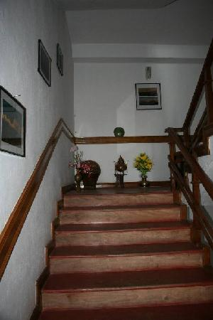 Snow Lion HomeStay: The halls and stairs have personal touch.