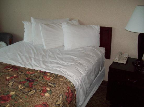 Causeway Bay Lansing Hotel : comfortable beds and clean and cozy