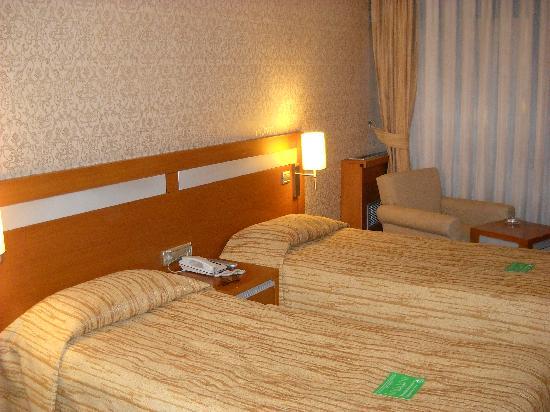 Almer Hotel Ankara: Camera doppia