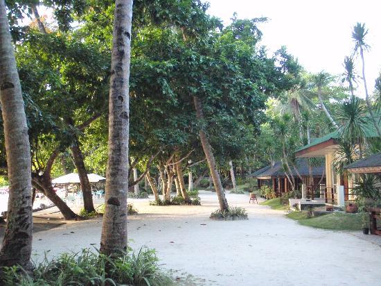 Dakak Park & Beach Resort: beach