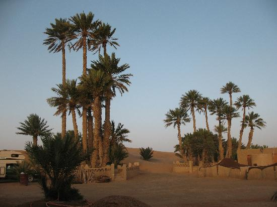 Auberge Camping Sahara: Back of the hotel... You literally walk right into the dunes!
