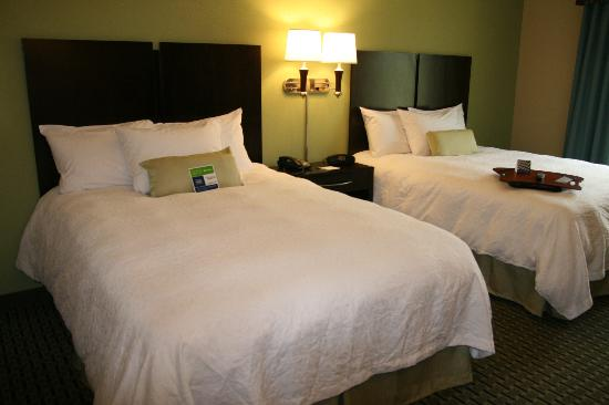Hampton Inn Dandridge: Guest Room