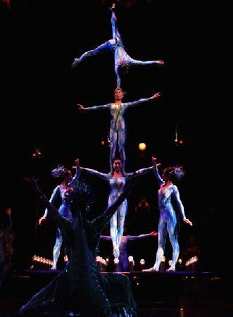La Nouba - Cirque du Soleil: MUY BUENA FOTO EN ORLANDO