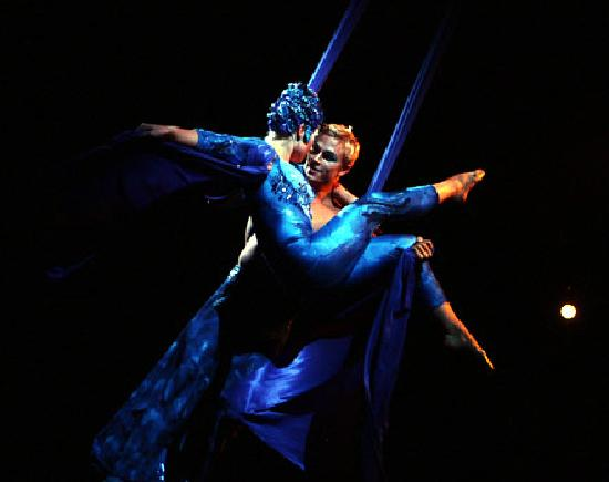 La Nouba - Cirque du Soleil: FUE UNOS DE MIS MEJORES RECUERDOS ESTE CIRCO