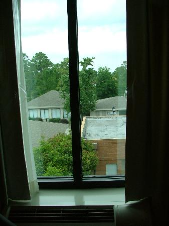 Holiday Inn Express Hotel & Suites Gulf Shores: The view's nothing special, but the room's still nice.