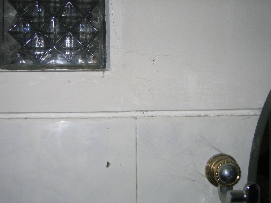 Dewa Bharata Ubud : filthy bathroom