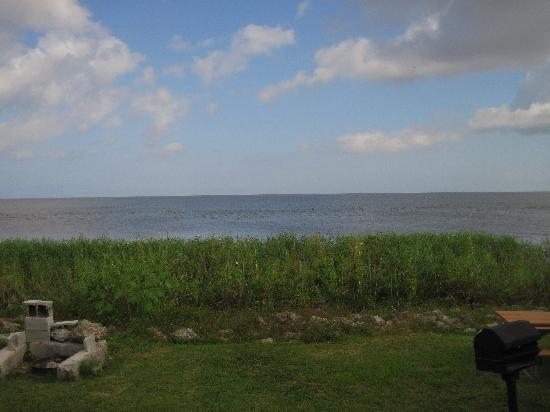 Pahokee, ฟลอริด้า: View of the lake from our cabin