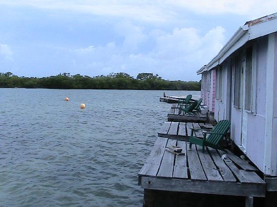 Hugh Parkey's Belize Adventure Lodge: these are the cabanas where we stayed... so comfy and very cool to see little fish walking to br