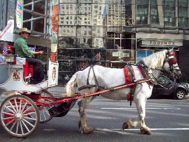 Carriage ride in C