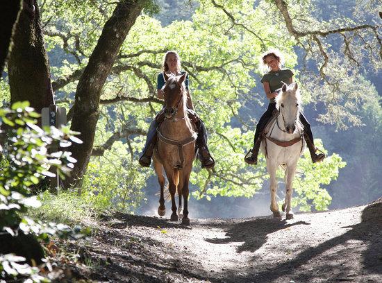 Tonimbuk Trail Rides