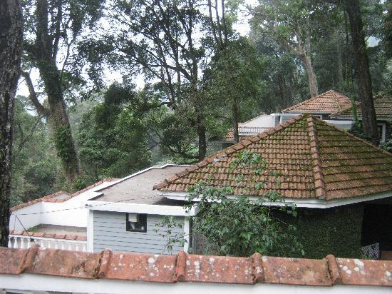 The Tall Trees Munnar: Cottages