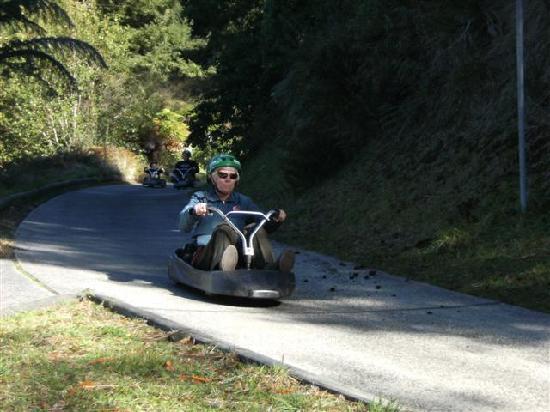 Skyline Rotorua: Scenic Luge Track