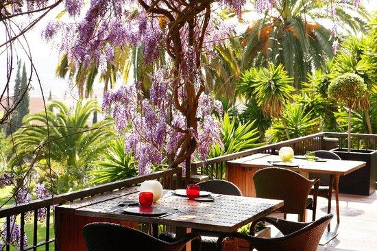 FREU Restaurant: Restaurante FREU - Primavera