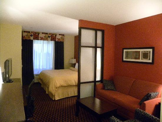 Comfort Suites Florence: View of room on entrance
