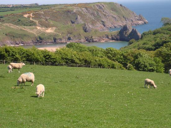 Parc-Le-Breos Guest House: view of Three Cliffs Bay