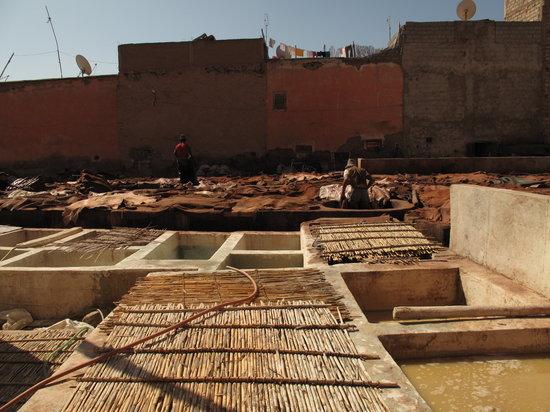 Riad Nejma Lounge: le quartier des tanneurs (secteur berbère)