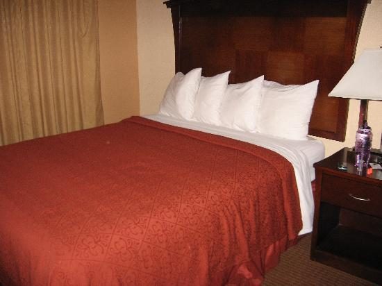 Quality Inn San Simeon: The beds