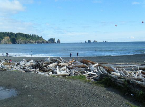 Hungry Bear Cafe, Motel & RV Park: La Push