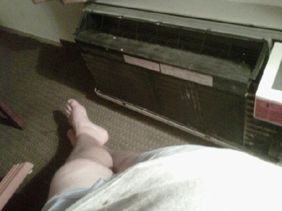 Quality Inn London: Filthy carpet and broken AC
