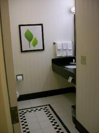 Fairfield Inn & Suites Kingsland : Bathroom