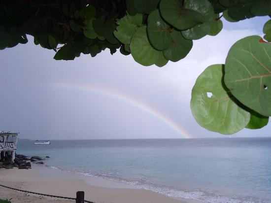 Grand Case Beach Club: a little liquid sunshine in the am created a beautiful rainbow
