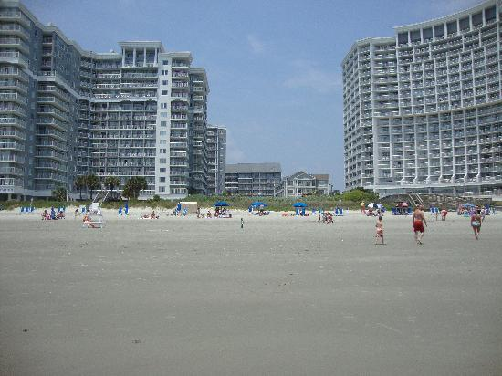 Sea Watch Resort : Sea Watch South & North Towers