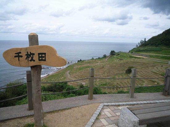 Shiroyone Semmaida: 千枚田