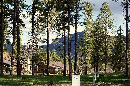 Echo Basin Cabin and RV Resort: One of our views of Echo Basin Ranch
