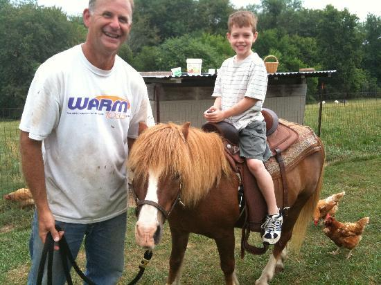 Country Vistas: Let's take a lap around the farm