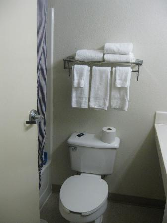 Extended Stay America - Detroit - Sterling Heights: Bathroom