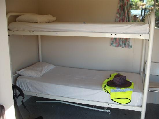 Ranfurly Holiday Park & Motels: Bunks In Cabin