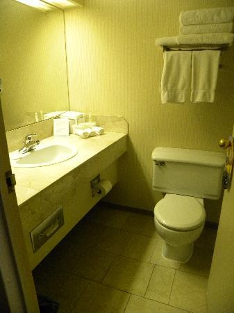 Atrium Inn Vancouver: Clean, functional bathroom