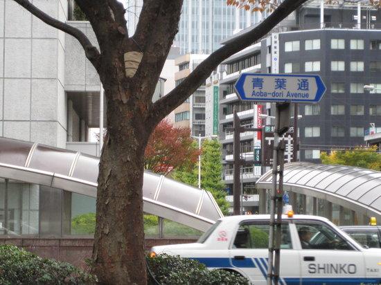 Aoba-dori Avenue