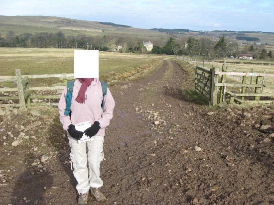 Cheviot Holiday Cottages: The start of a walk near the cottage