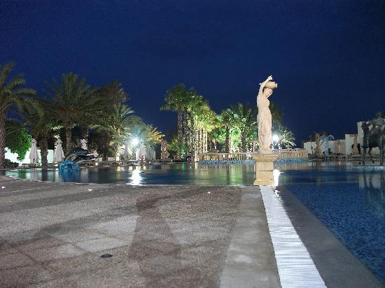 Hotel Palace Hammamet Marhaba: One of the Pools at Night