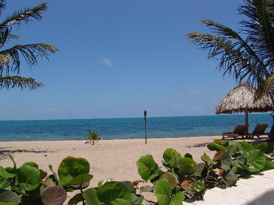 View from Tiki Bar Pool