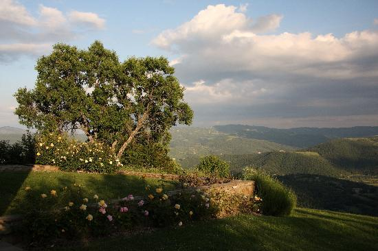 Casa Panfili: A beautiful view
