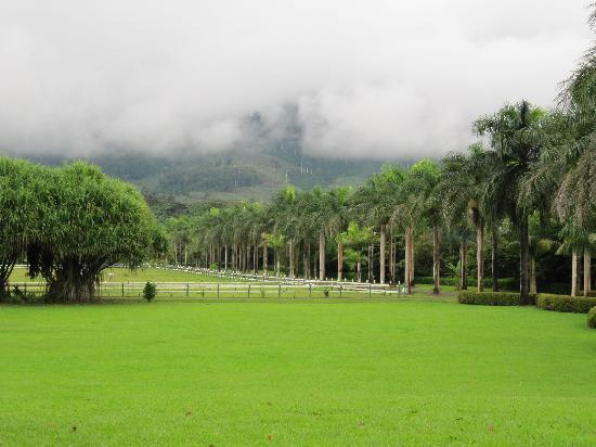 Hotel Casa Turire: the hotel gardens