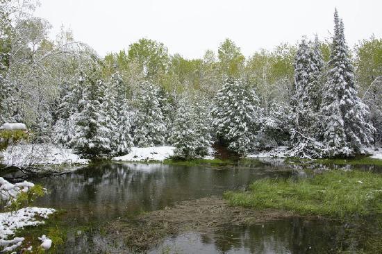 Green Bay Lodge : Spaziergang im Schnee