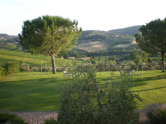 Fattoria Abbazia Monte Oliveto: View from apartment - across the garden and beyond