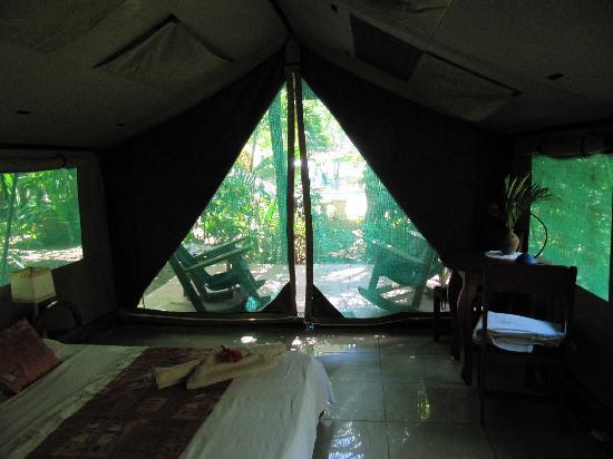 Bahari Beach Bungalows: our tent 2
