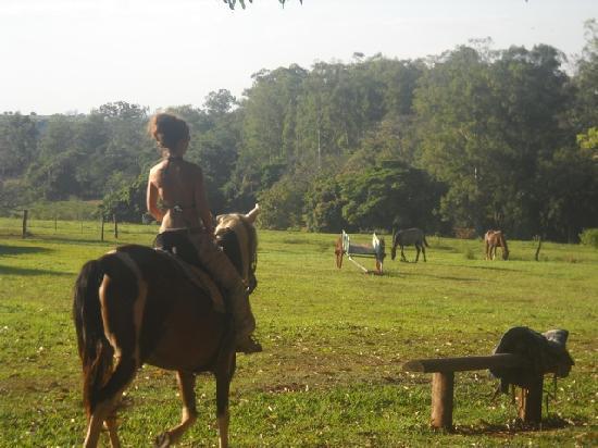 Fazenda Laranjal Guest Ranch: Riding on the range