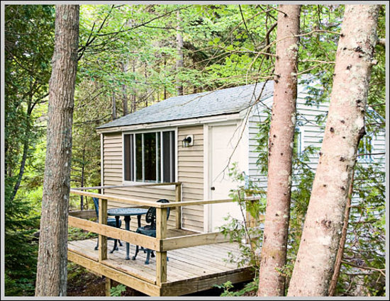 Acadia Cottages - nestled in wooded setting